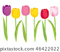 Colorful tulip set 46422022