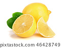 lemon, fruit, half 46428749