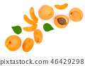 Apricot fruits isolated on white background with copy space for your text. Top view. Flat lay 46429298