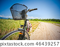 Close Up on bicycle on rural road.  46439257