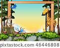 wild forest frame 46446808