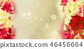 frame of pink poinsettia flower or christmas star 46456664