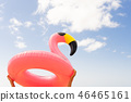 Pink flamingo on beach 46465161