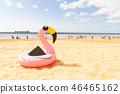 Pink flamingo on beach 46465162