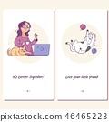 猫 猫咪 可爱 46465223