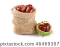 chestnut in a bag isolated on white background closeup 46469307