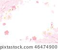 cherry blossom, cherry tree, spring 46474900