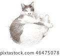 ดินสอดำแมวขาว 46475078