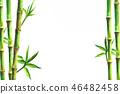 bamboo design frame 46482458