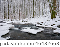 small cascade on the forest creek in winter 46482668