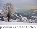 lovely winter scenery with tree 46482672