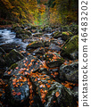 Autumn on the River Braan in Perthshire 46483202