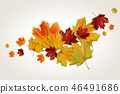 autumn maple leaves 46491686