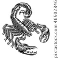 Scorpion Scorpio Zodiac Sign Woodcut Design 46502846
