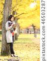 秋天 秋 楓樹 46503287