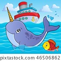 Narwhale theme image 1 46506862
