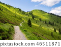path, landscape, scenery 46511871