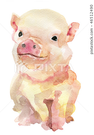 Watercolor sketch of pink pig isolated on white  46512490