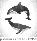 Watercolor killer whale and fin whale 46512959