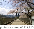 suspension bridge, bridge, bridges 46514913