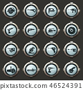 vector, icon, set 46524391