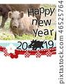 New Year's card 2019 wild boar 46525764
