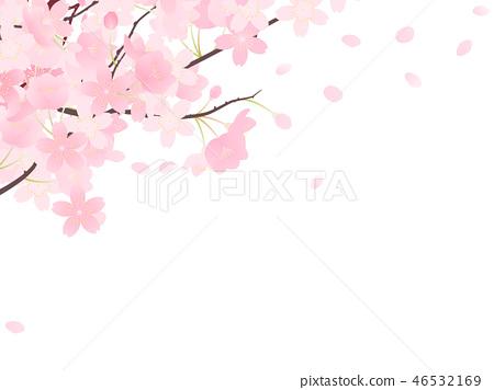 吉野櫻花樹 46532169