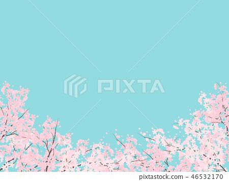 吉野櫻花樹 46532170