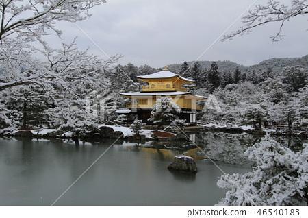 金閣寺在冬天 46540183