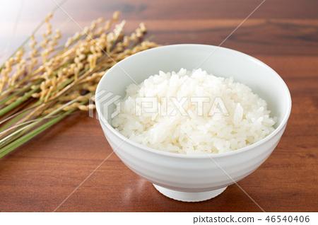 rice 46540406