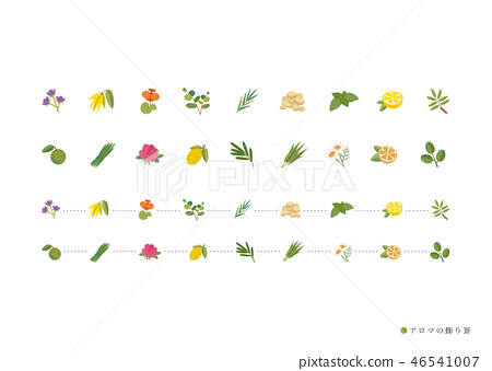 流行的草藥裝飾kei 46541007