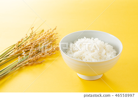 rice 46558997