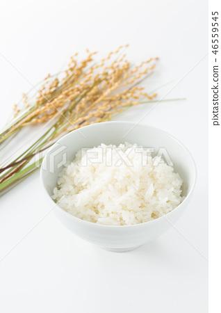 rice 46559545