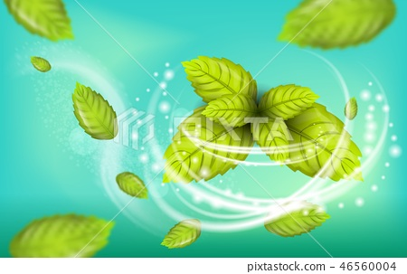 Realistic Illustration Flying Mint Leaf Vector 46560004