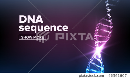 Dna Structure Vector. Human Genome. Genetic Molecule. Strand, Sequence. Illustration 46561607