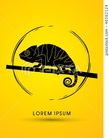 Chameleon graphic vector. 46562124