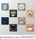 Cats icons vector set 46562807