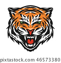 Aggressive tiger face. 46573380