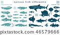 Fish silhouette material collection 46579666