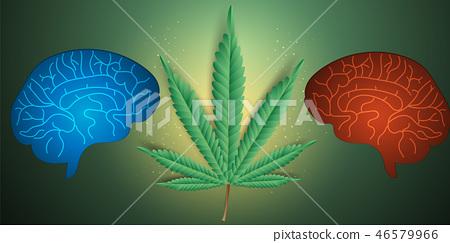 Effects of marijuana,cannabis on the brain 46579966