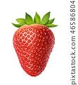 Whole strawberry isolated on white background 46586804