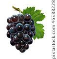 Bunch of grapes with leaf 46588228