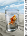 Fish floating in a glass of water 46588229