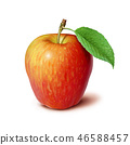 Red Apple with leaf 46588457
