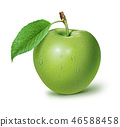 apple fruit fruits 46588458