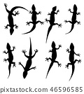 Set of vector silhouette in the shape of a lizard 46596585