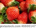 딸기, 스트로베리, 과일 46600147