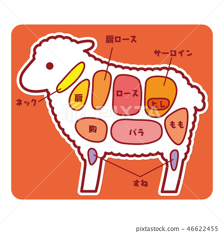Food illustration / part of sheep meat 46622455