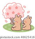꽃놀이 곰 46625416