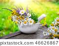 Mortar of medicinal herbs and daisy healing herbs. 46626867